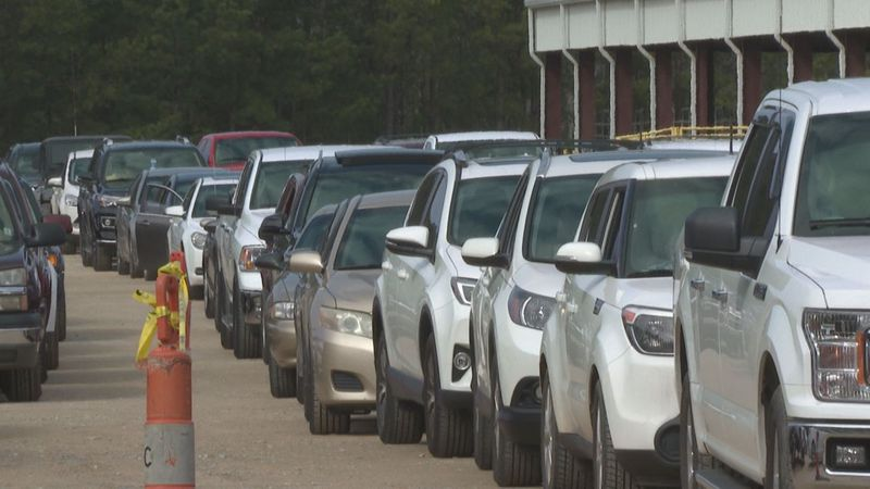 Cars lineup for food giveaway