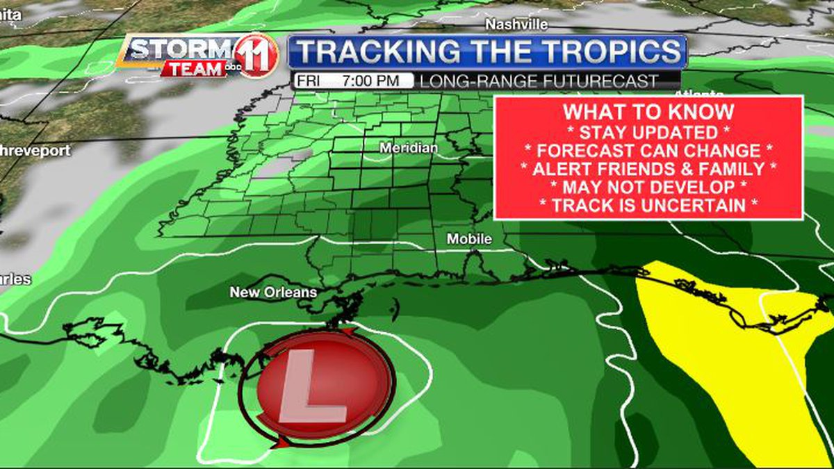 A tropical depression or tropical storm could form in the Gulf of Mexico next week.
