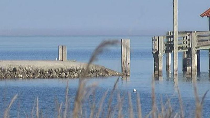 Authorities are investigating a body that was found floating in the water near a Gulfport pier...