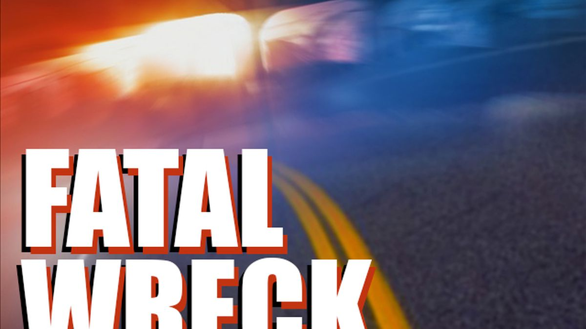 A woman and a 4-year-old died Saturday after a single-vehicle accident in Sumter County.