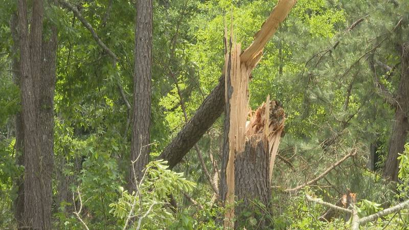 More damage found from Tuesday's tornado in Quitman, Miss.
