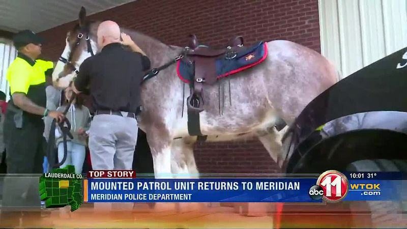 MPD Mounted Patrol