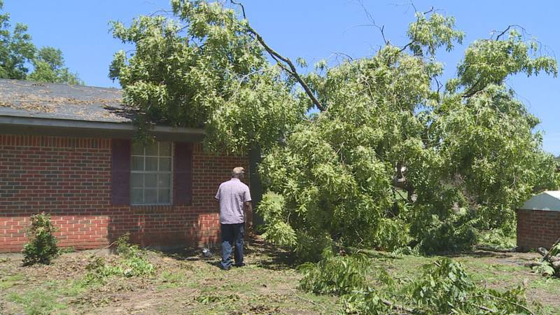 Tree falls on house during Sunday's storm.