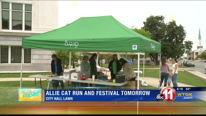 Allie Cat Run and Festival taking place Saturday