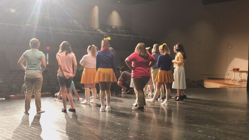"""Students will be performing at the McCain Theater to a popular Disney Movie """"Descendants the..."""