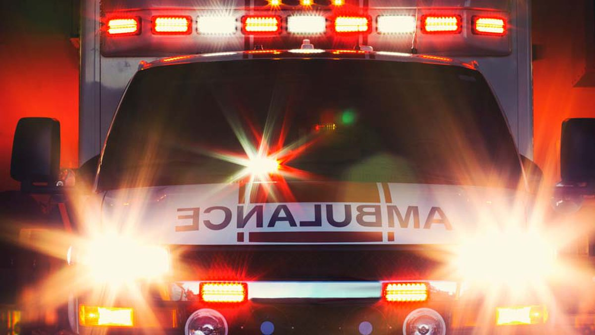 Two head-on collisions this week in same area of Highway 19 have resulted in fatalities....