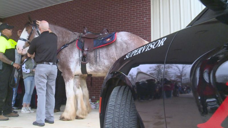 The Meridian Police Department use to have a mounted patrol years ago. Now, they have two full...