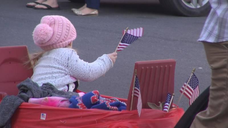 Annual Veterans Day celebrations in Meridian