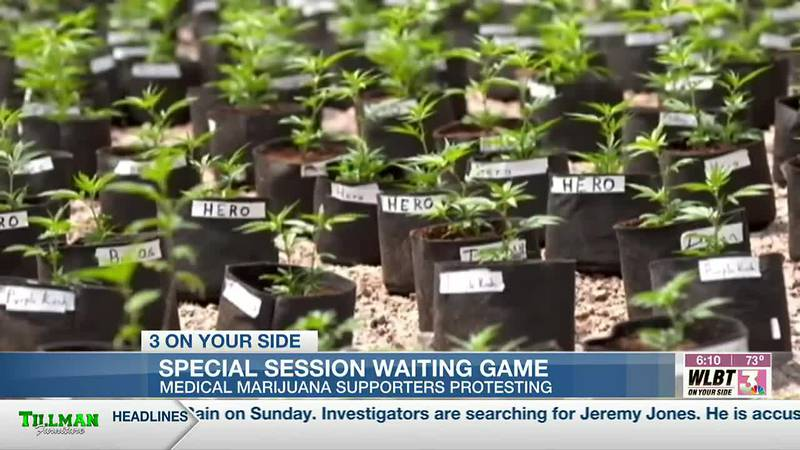 Special session waiting game dragging on too long for medical marijuana advocates
