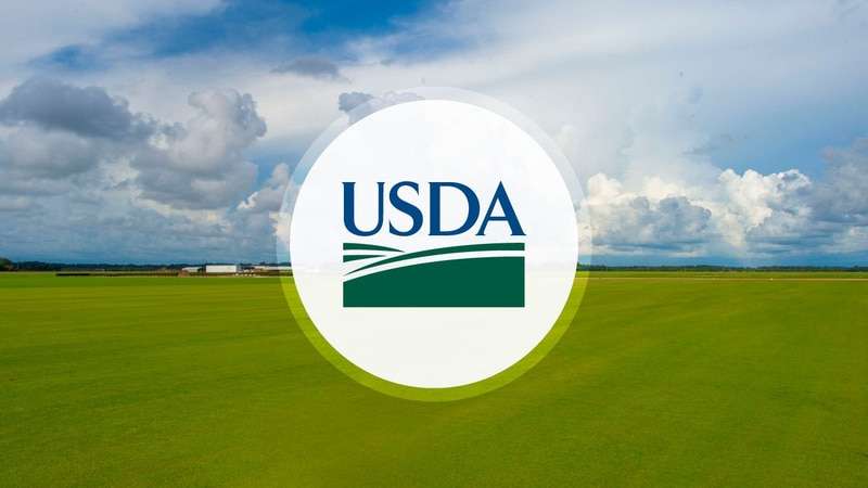 The moratorium applies to rural properties financed by USDA Single-Family Housing Direct and...